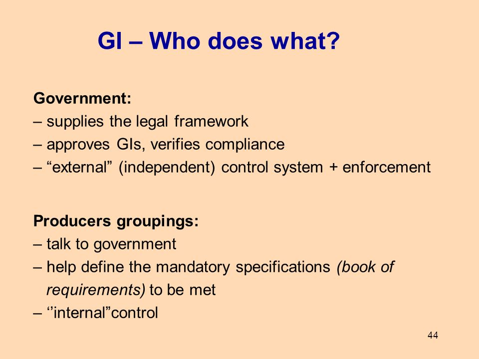GI – Who does what Government: – supplies the legal framework