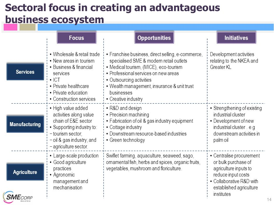 Sectoral focus in creating an advantageous business ecosystem