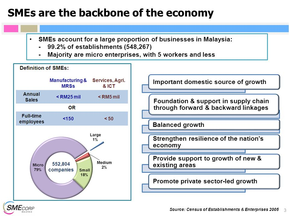 SMEs are the backbone of the economy