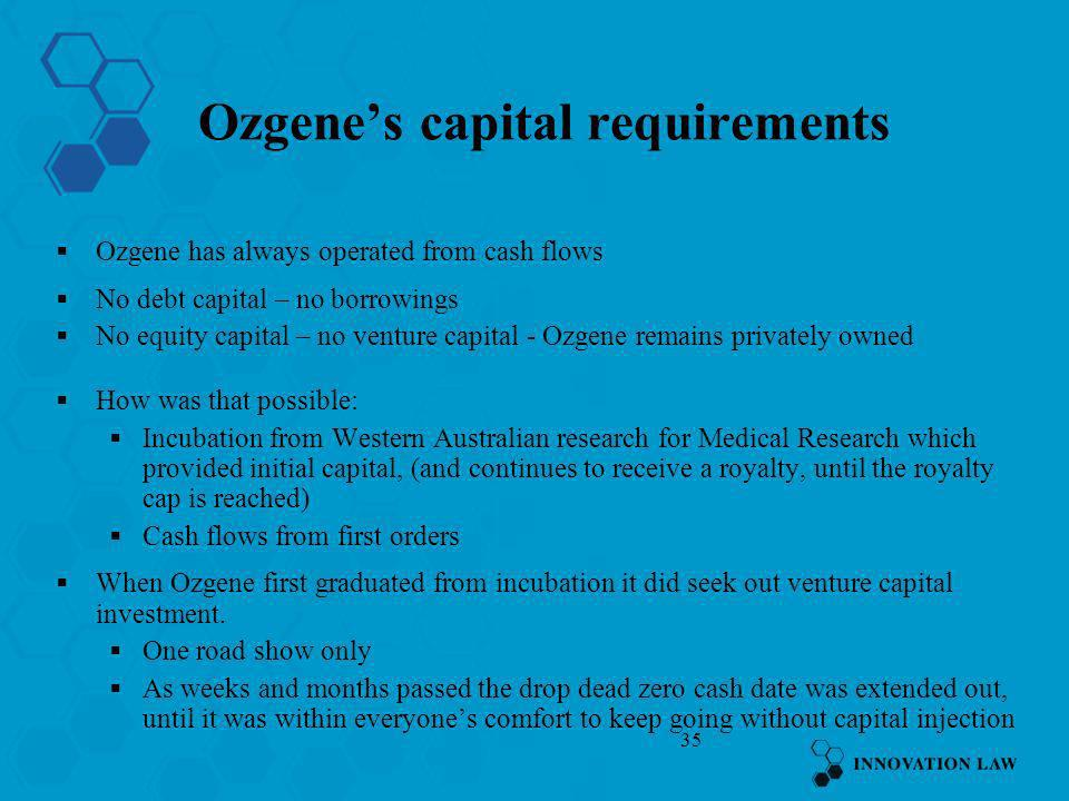 Ozgene's capital requirements