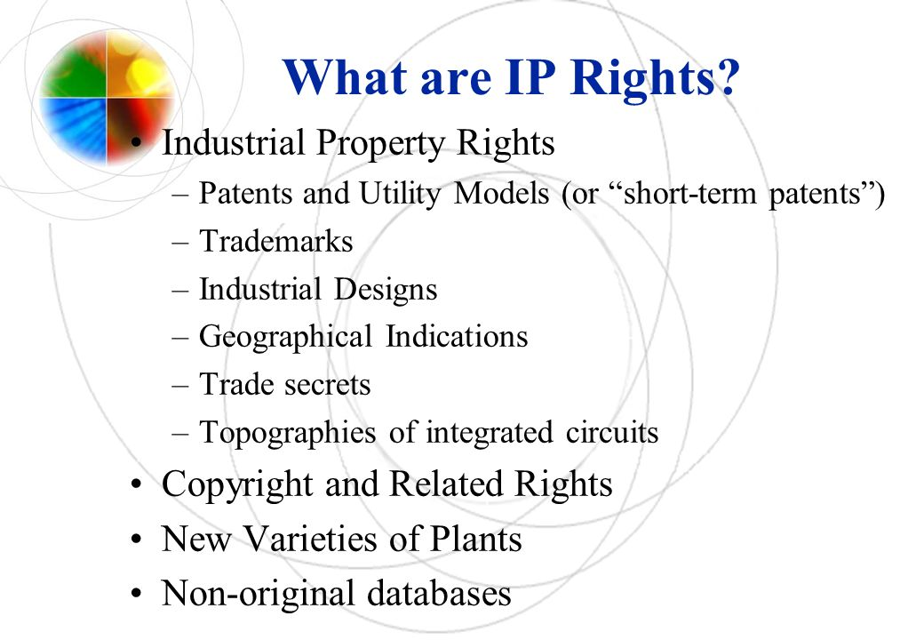 What are IP Rights Industrial Property Rights