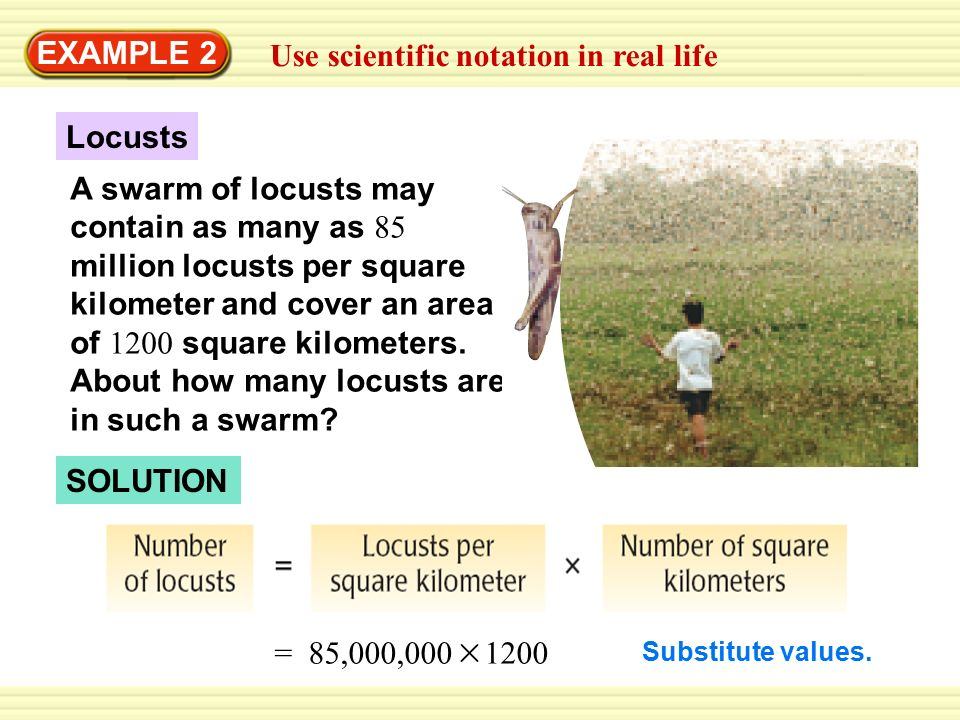 Use scientific notation in real life