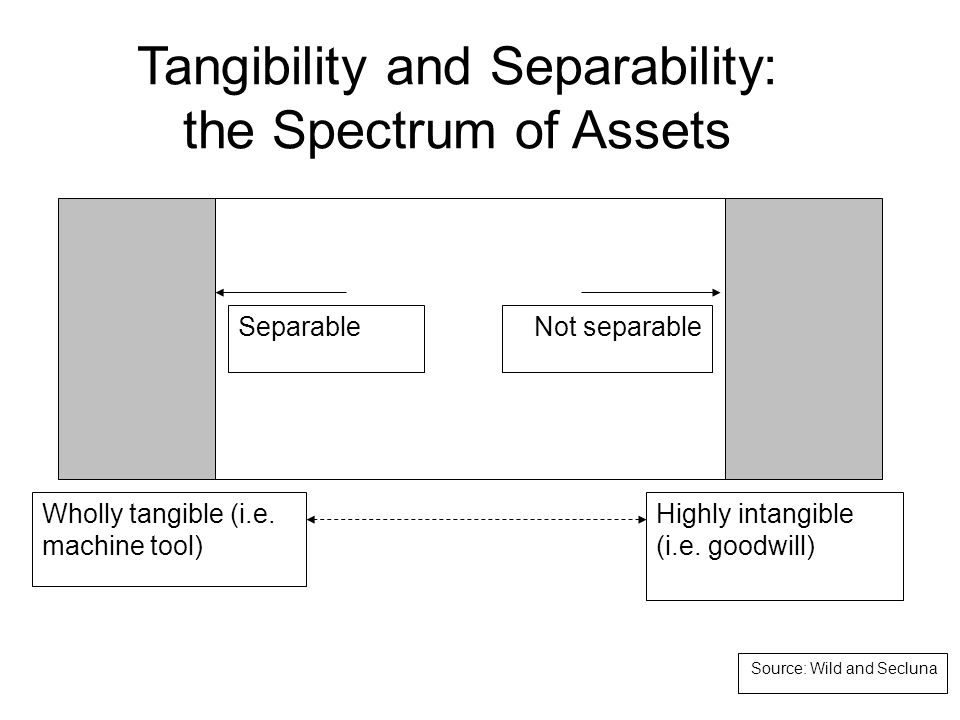 Tangibility and Separability: the Spectrum of Assets