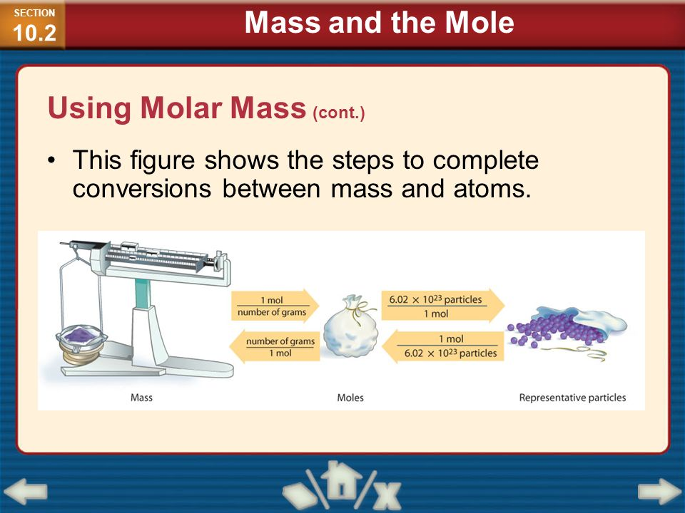 Using Molar Mass (cont.)