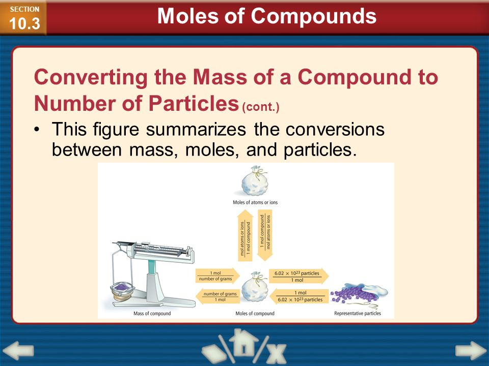 Converting the Mass of a Compound to Number of Particles (cont.)