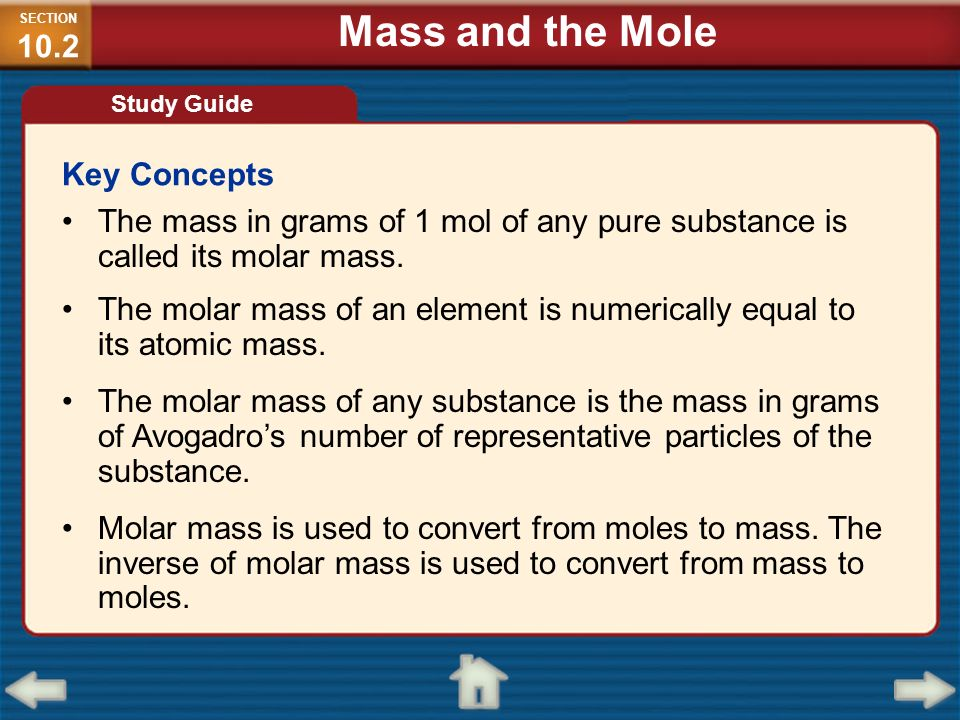 Mass and the Mole Key Concepts