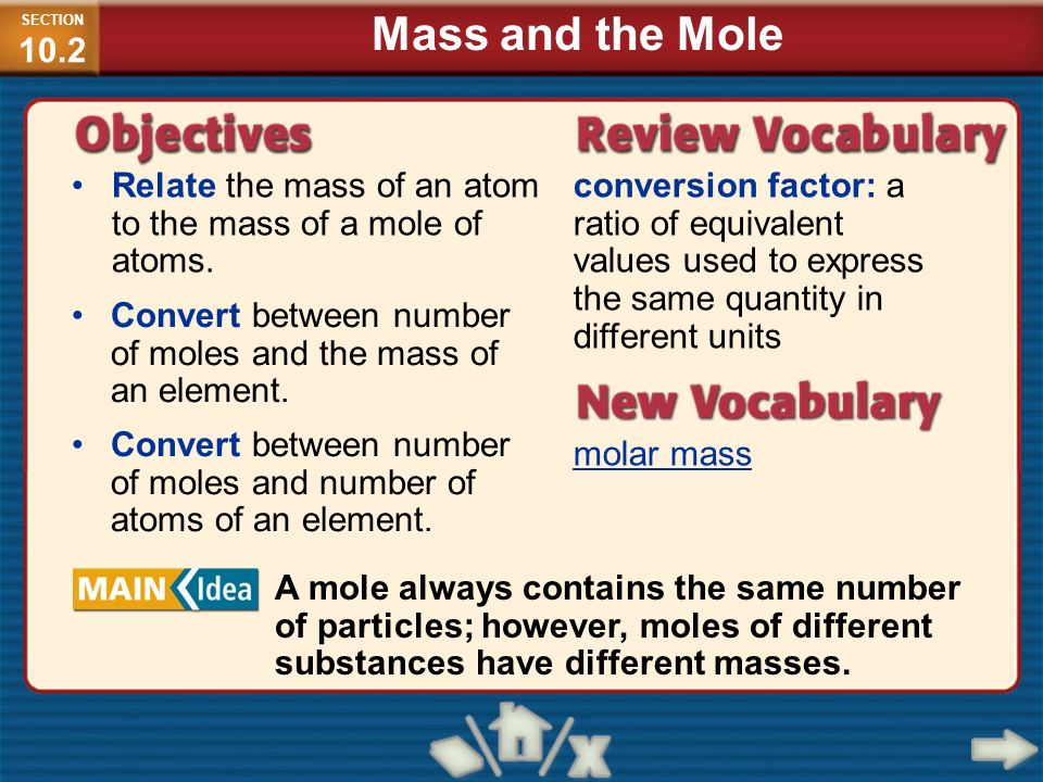 SECTION10.2 Mass and the Mole. Relate the mass of an atom to the mass of a mole of atoms.