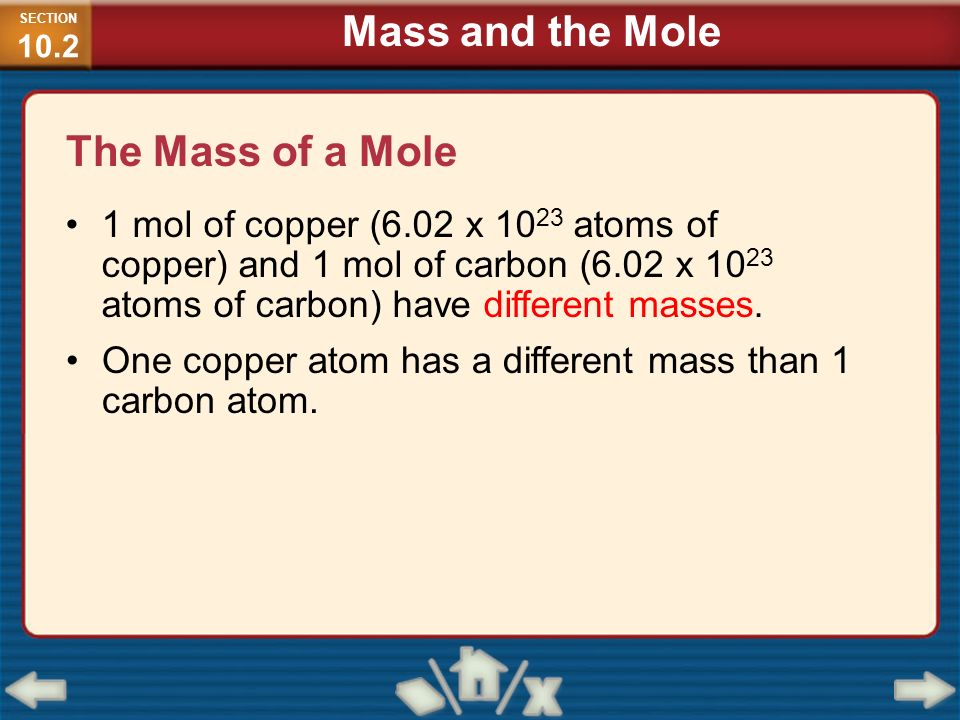 Mass and the Mole The Mass of a Mole