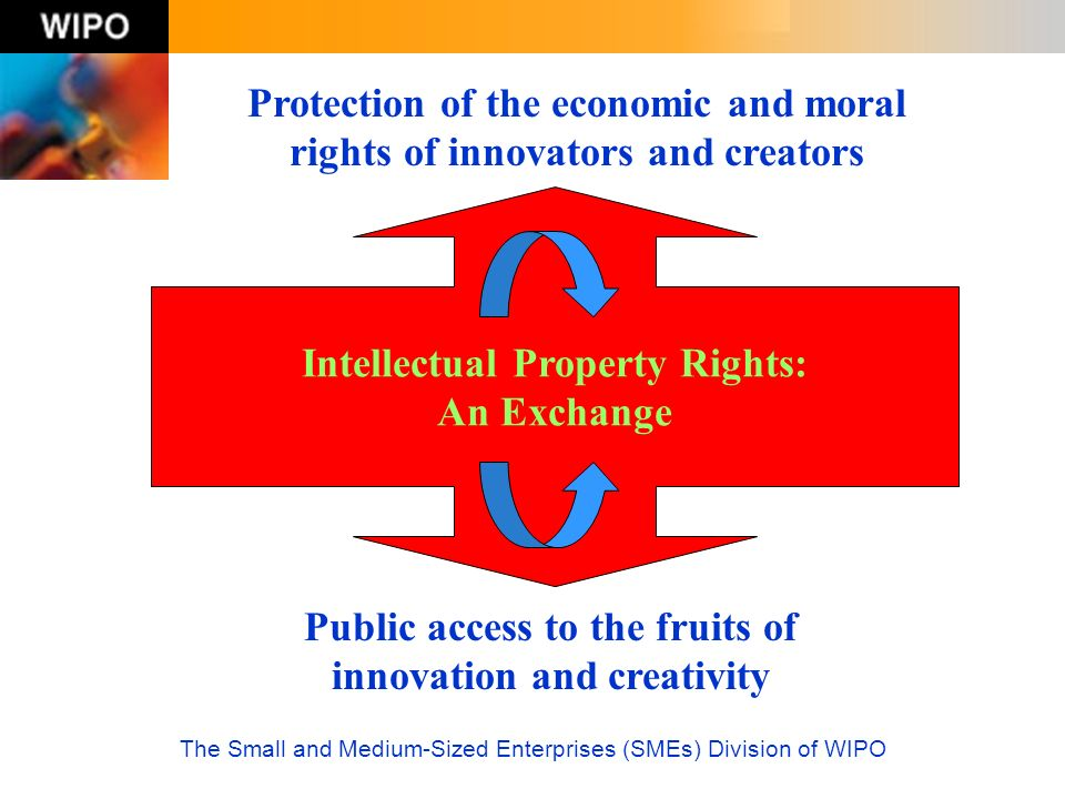 Protection of the economic and moral rights of innovators and creators