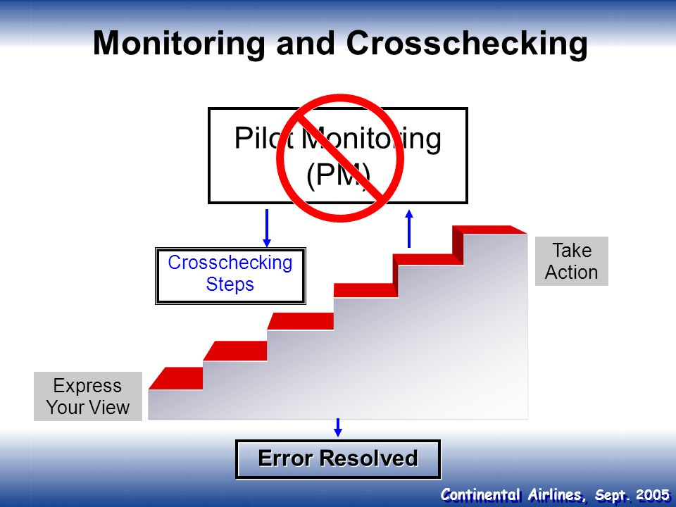 Monitoring and Crosschecking
