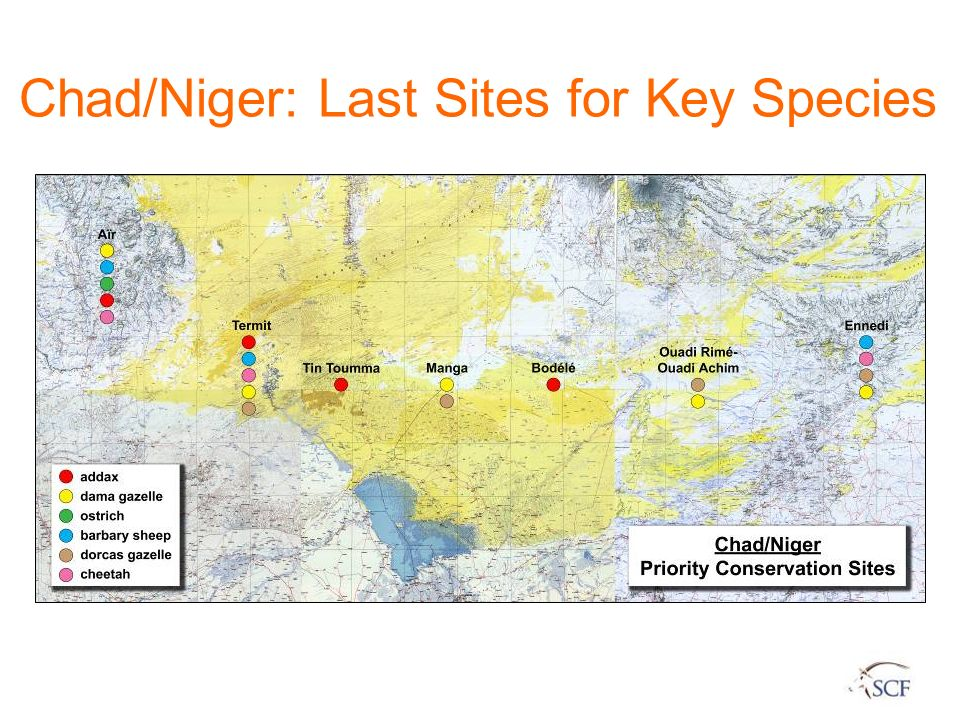 Chad/Niger: Last Sites for Key Species