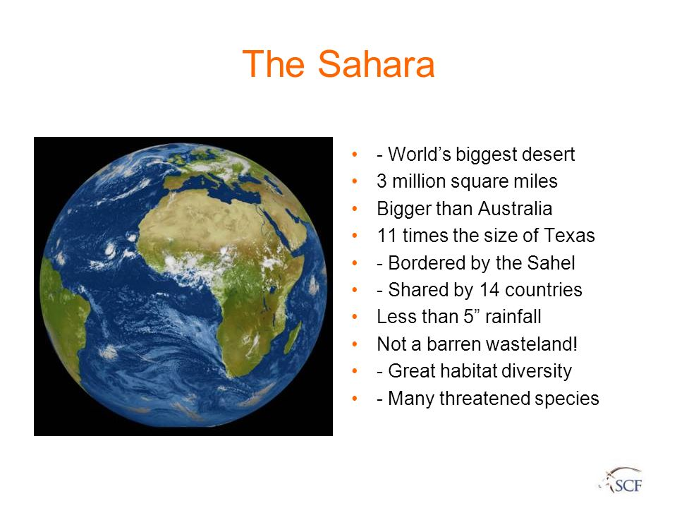 The Sahara - World's biggest desert 3 million square miles