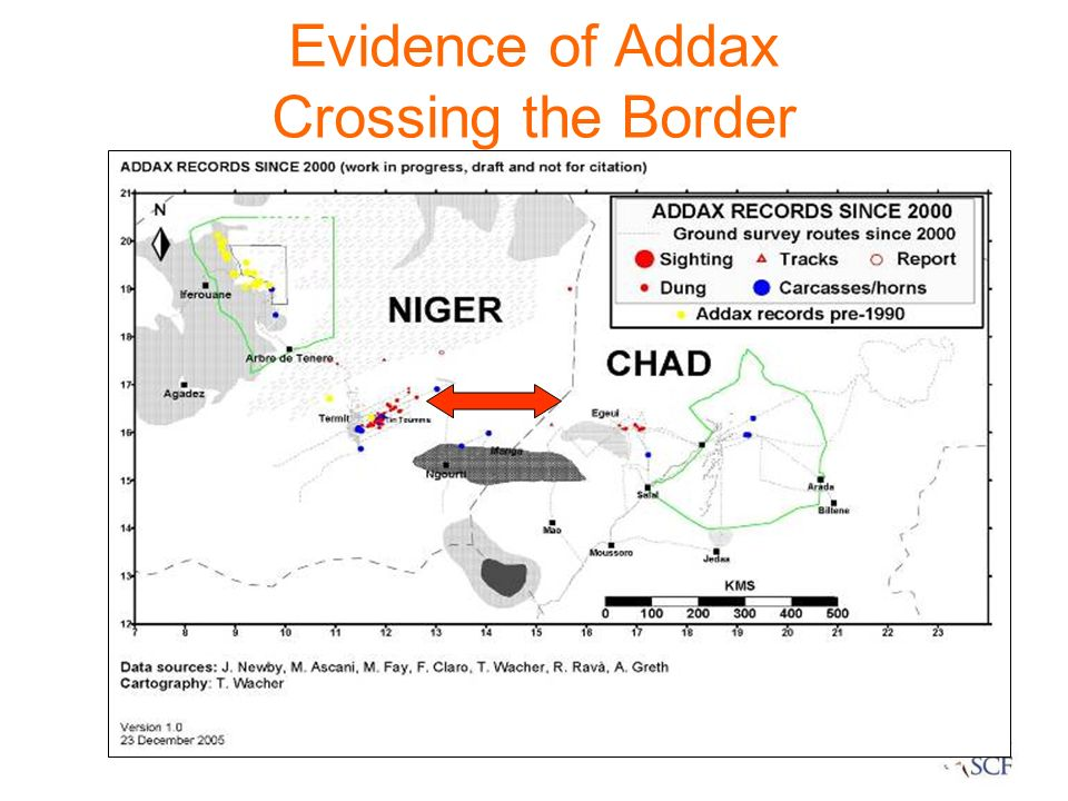 Evidence of Addax Crossing the Border