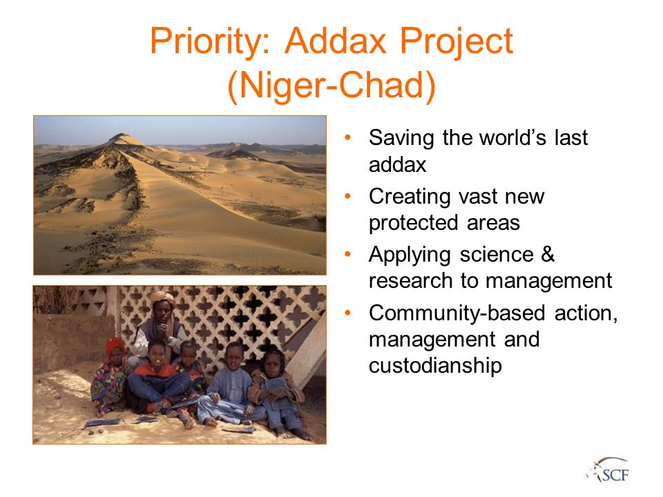 Priority: Addax Project (Niger-Chad)
