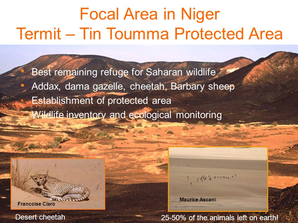 Termit – Tin Toumma Protected Area