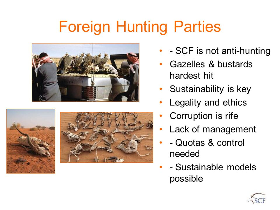 Foreign Hunting Parties