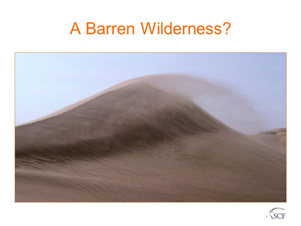 A Barren Wilderness 3