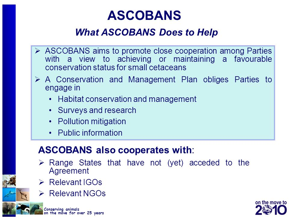 ASCOBANS What ASCOBANS Does to Help