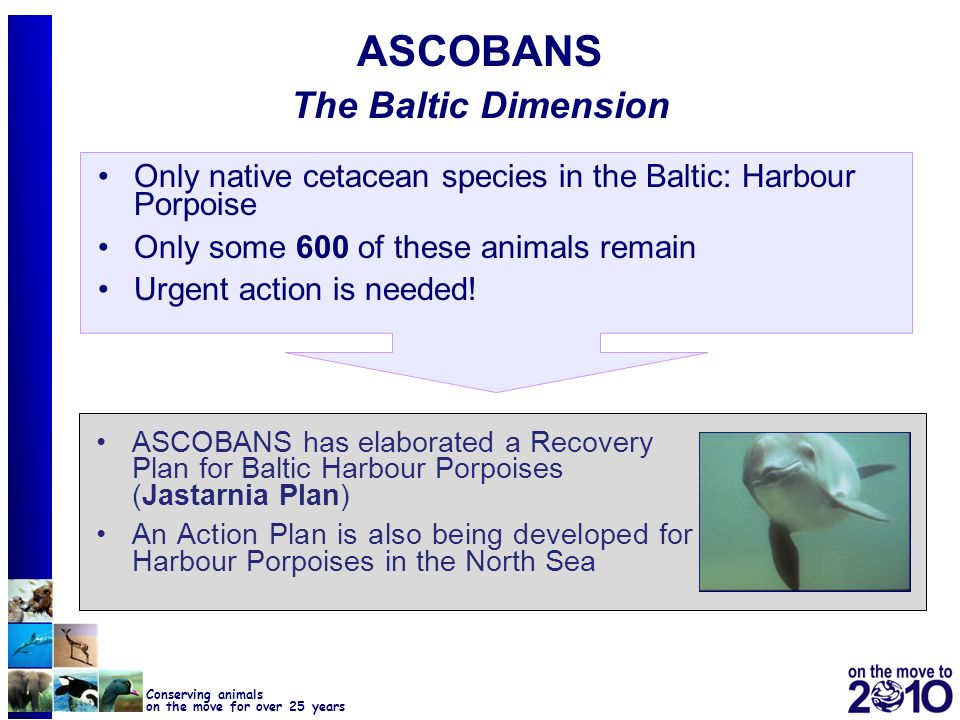 ASCOBANS The Baltic Dimension