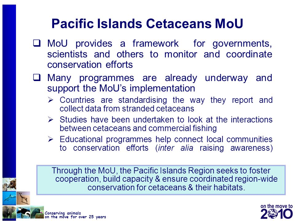 Pacific Islands Cetaceans MoU