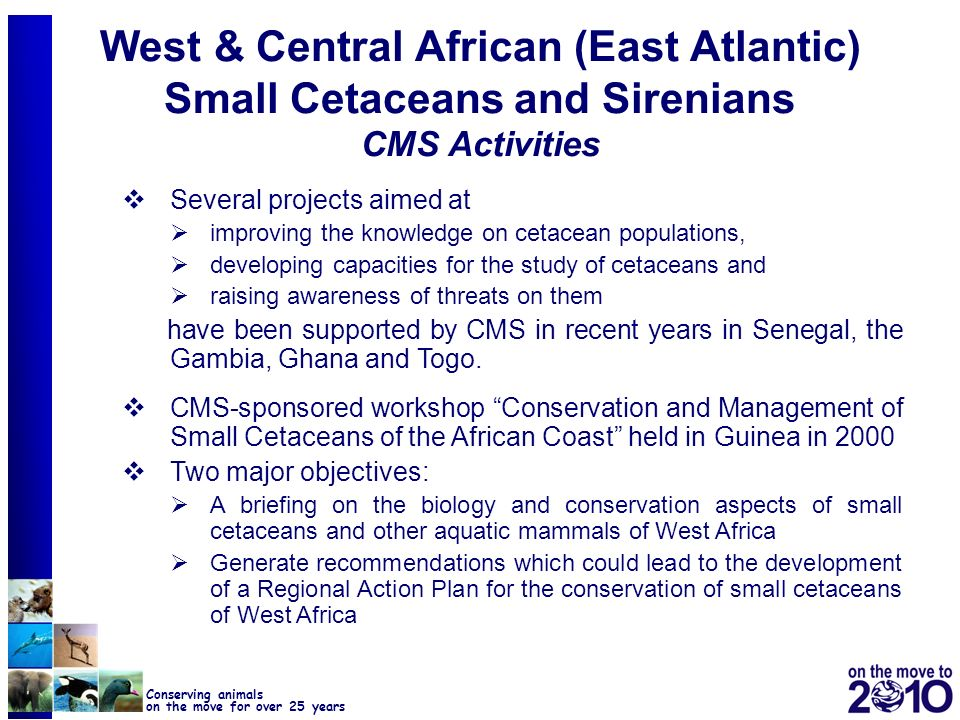 West & Central African (East Atlantic) Small Cetaceans and Sirenians CMS Activities