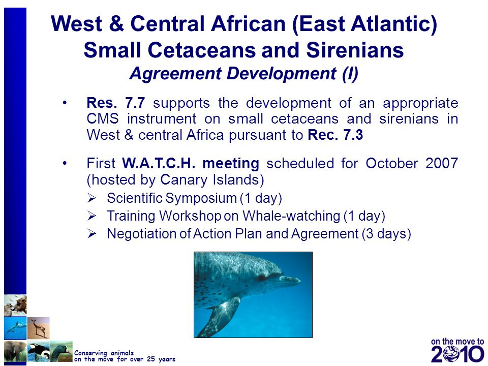 West & Central African (East Atlantic) Small Cetaceans and Sirenians Agreement Development (I)
