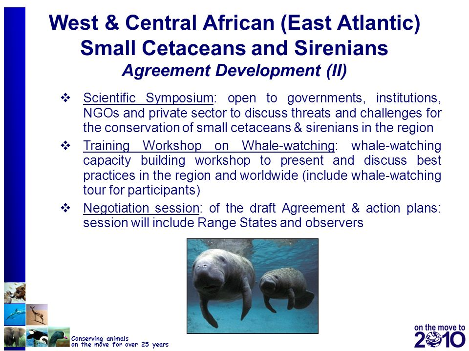 West & Central African (East Atlantic) Small Cetaceans and Sirenians Agreement Development (II)
