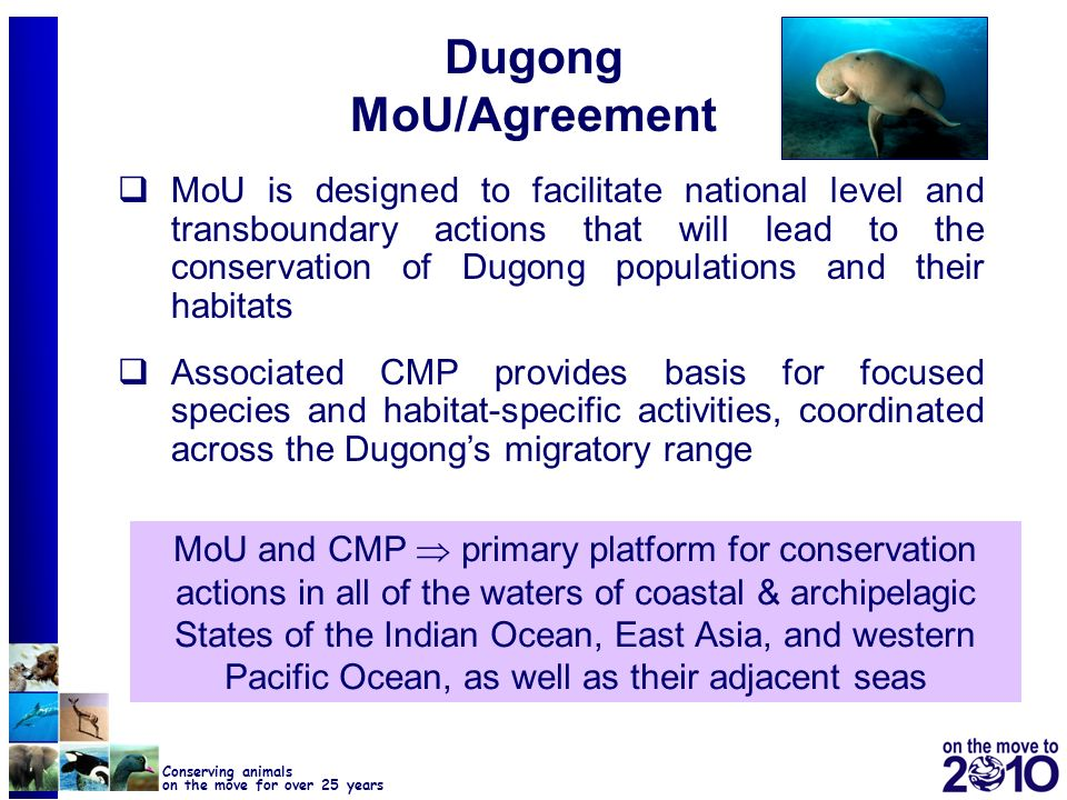 Dugong MoU/Agreement