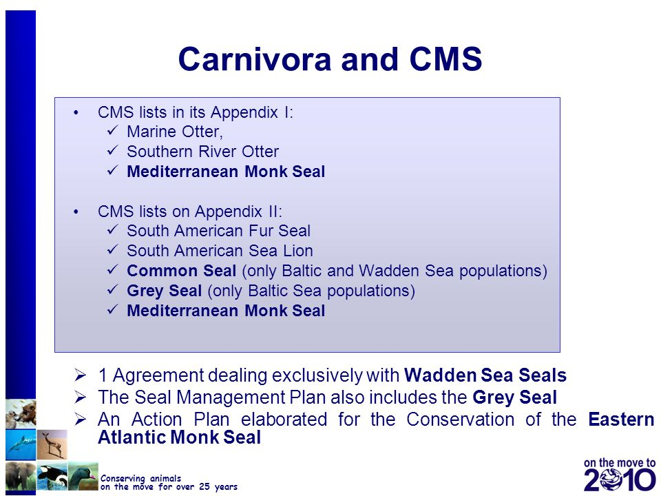 Carnivora and CMS CMS lists in its Appendix I: Marine Otter, Southern River Otter. Mediterranean Monk Seal.