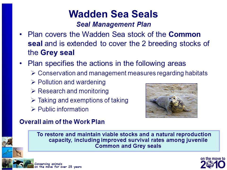 Wadden Sea Seals Seal Management Plan