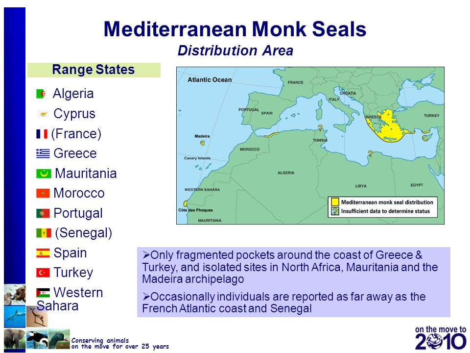 Mediterranean Monk Seals Distribution Area