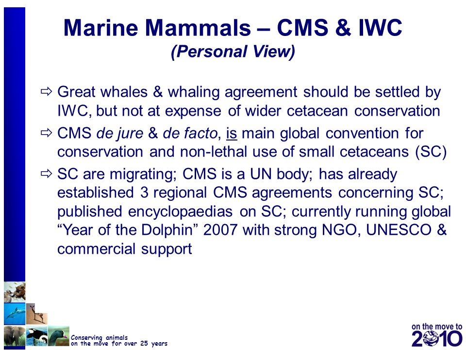 Marine Mammals – CMS & IWC (Personal View)