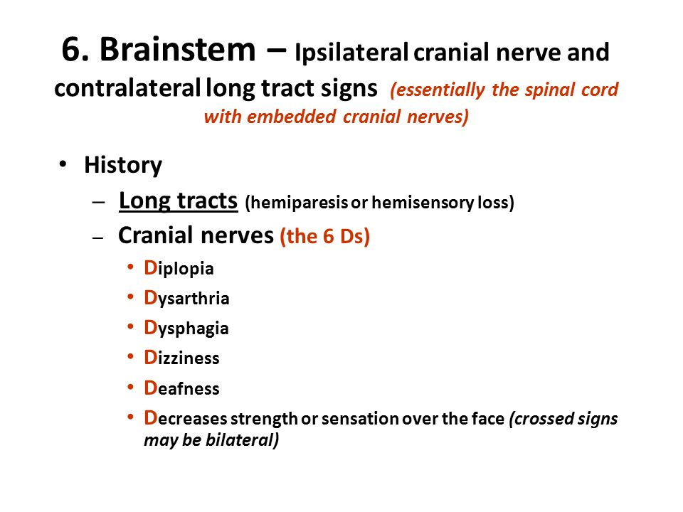 The Neurological Exam Made Simple  Ppt Video Online Download. Arthritis Signs Of Stroke. Chemical Hazard Signs. Road Australian Signs Of Stroke. Condominium Signs. Arias Signs Of Stroke. Itchy Bump Signs. Video Signs Of Stroke. Gas Mask Signs