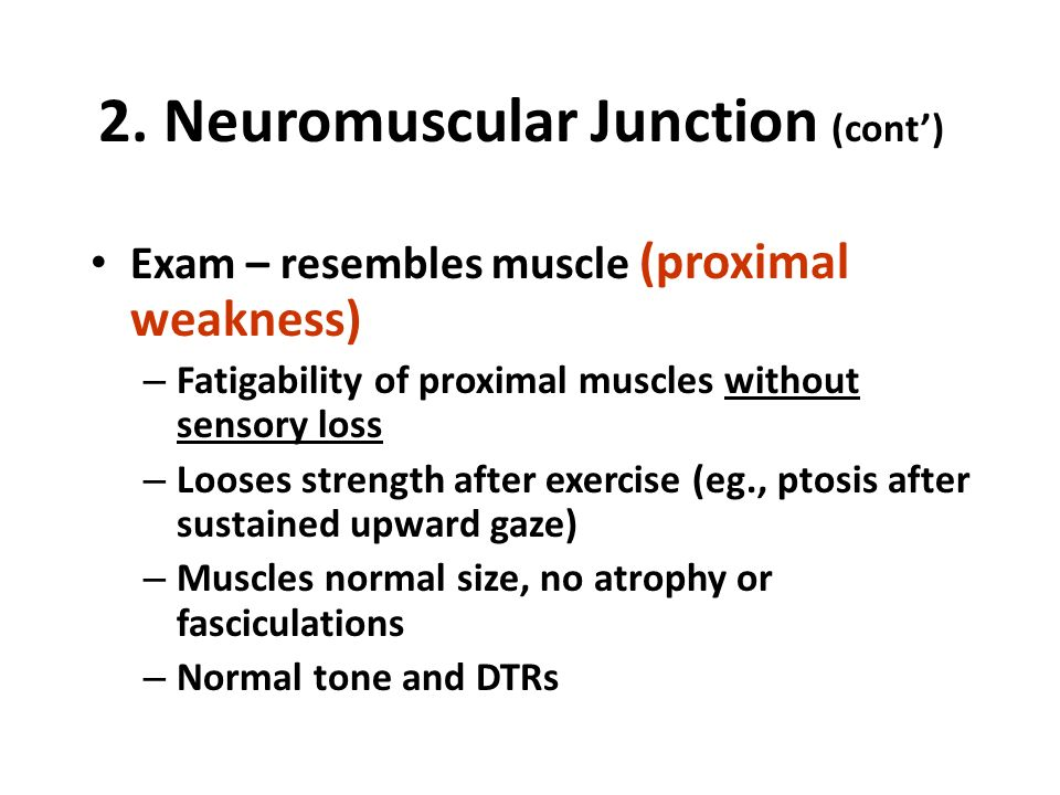 Lower Limb Neurological Examination – OSCE Guide