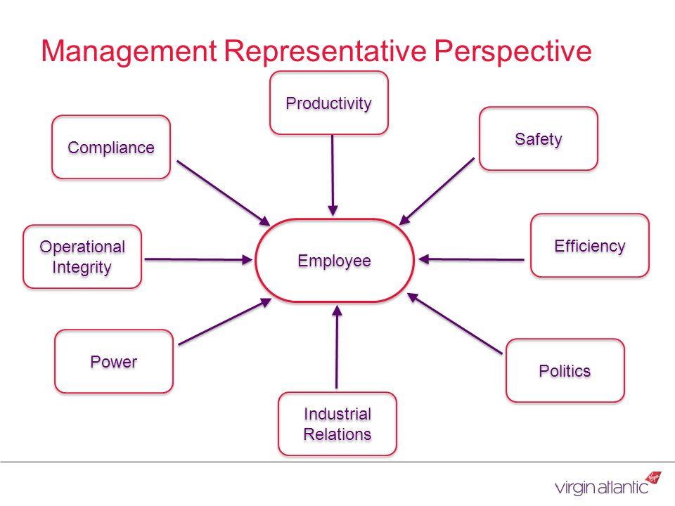 Management Representative Perspective