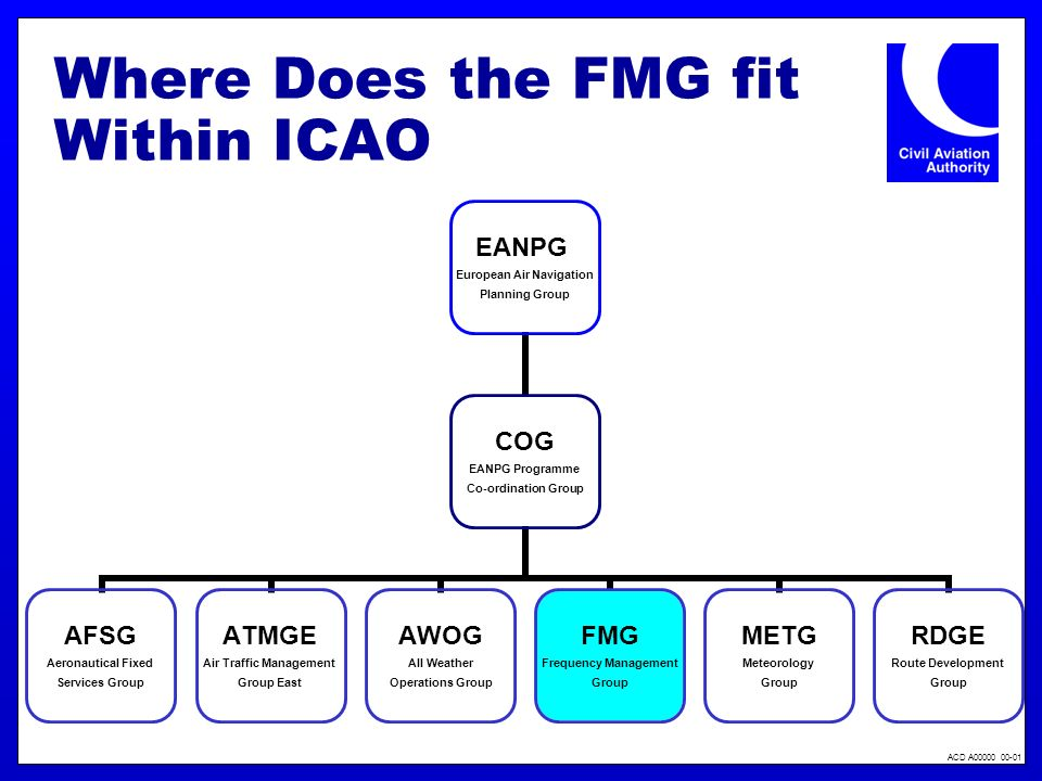 Where Does the FMG fit Within ICAO