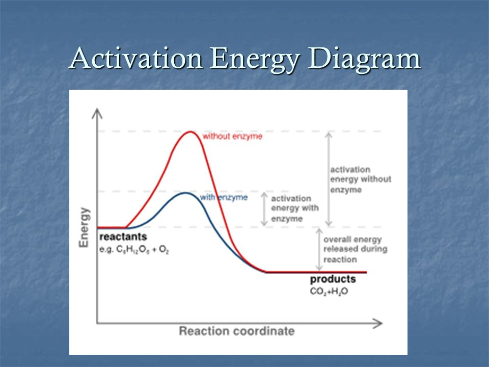 Activation Energy Diagram Diagram Potential Energy Diagram