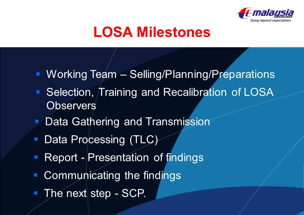 LOSA Milestones Working Team – Selling/Planning/Preparations