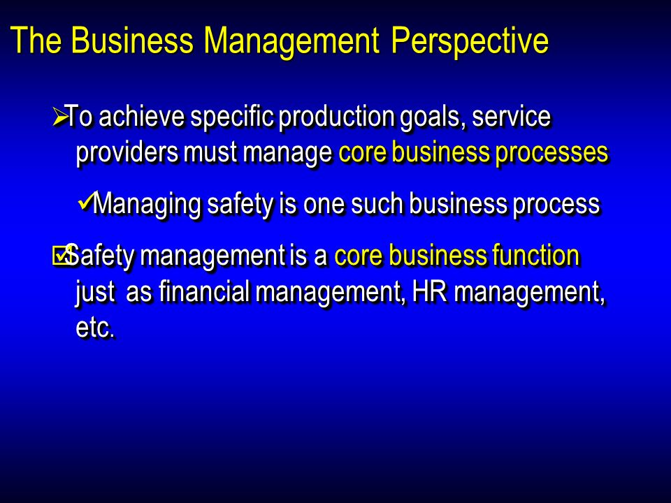The Business Management Perspective
