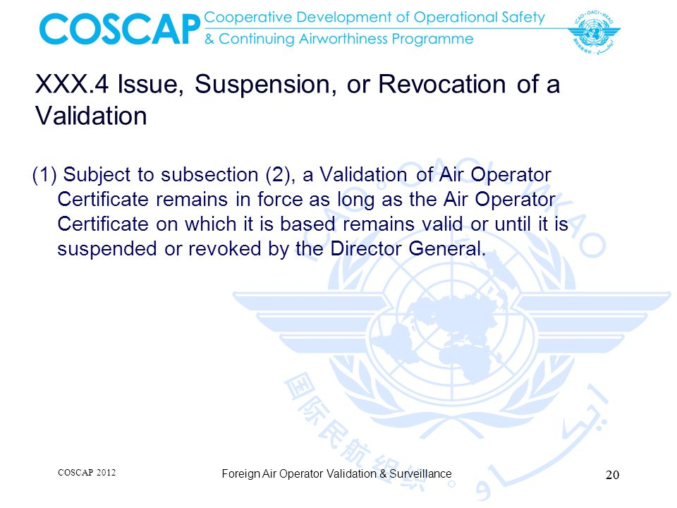 XXX.4 Issue, Suspension, or Revocation of a Validation