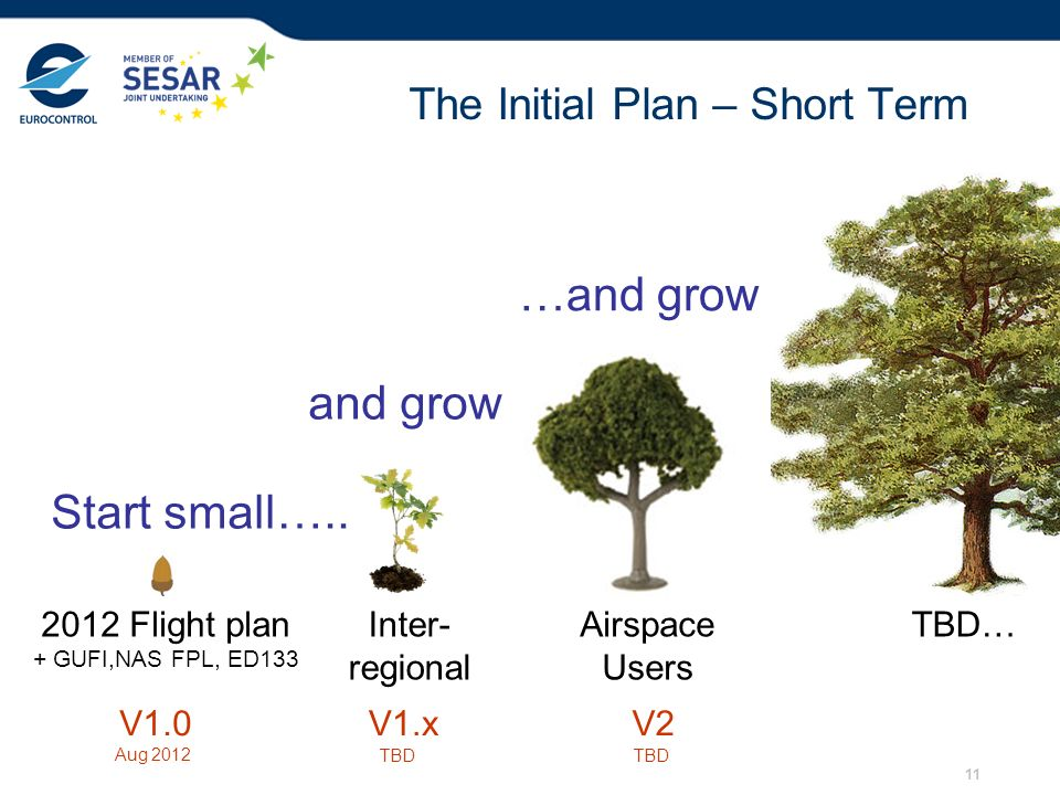 The Initial Plan – Short Term