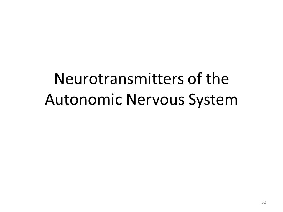 neurotransmitters the nervous system The autonomic nervous system (ans, or visceral nervous system, or involuntary nervous system) is the part of the peripheral nervous system that acts as a control system, functioning largely below the level of consciousness and controlling visceral functions.