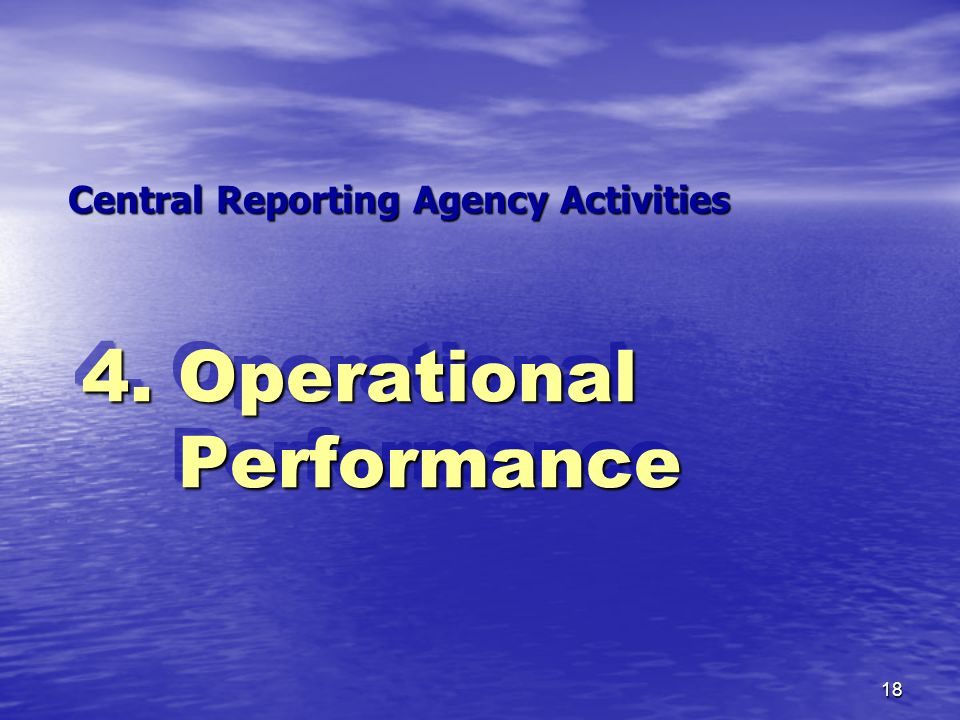Central Reporting Agency Activities