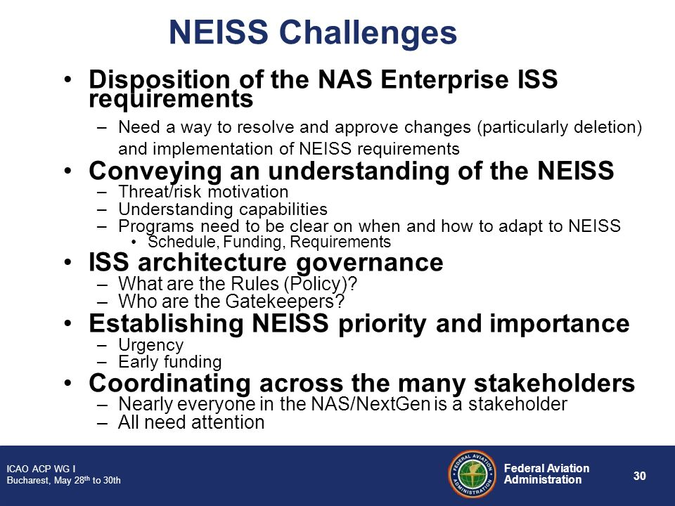 NEISS Challenges Disposition of the NAS Enterprise ISS requirements