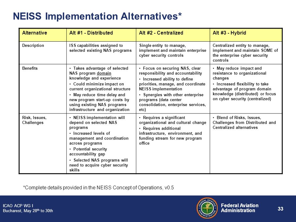 NEISS Implementation Alternatives*