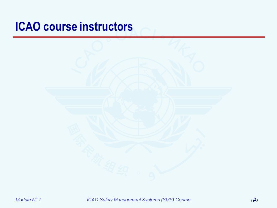 ICAO course instructors
