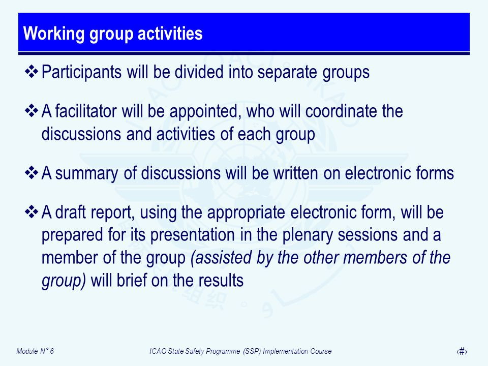 Working group activities