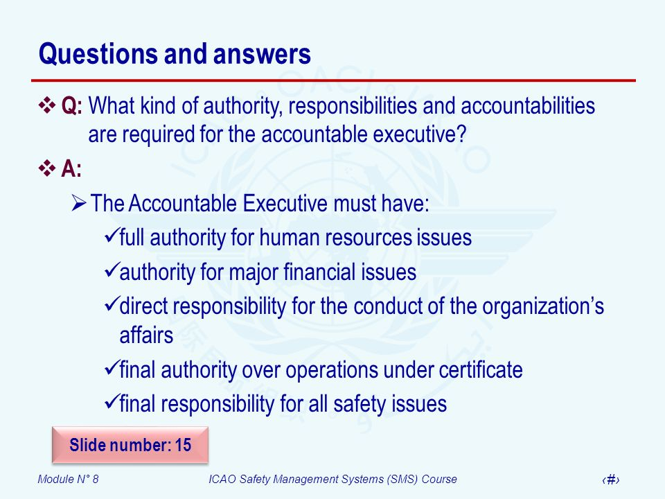 Questions and answers Q: What kind of authority, responsibilities and accountabilities are required for the accountable executive