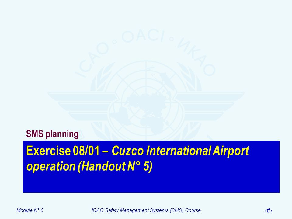 Exercise 08/01 – Cuzco International Airport operation (Handout N° 5)