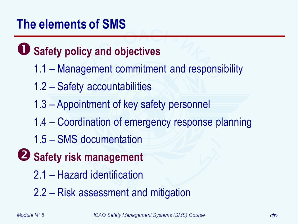 The elements of SMS Safety policy and objectives